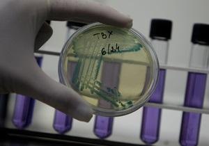 Белковые сети бактерий похожи на кольчугу - биологи