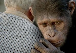 В Японии приматам показали фильм Восстание планеты обезьян