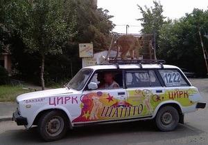 В Черновцах цирк в целях рекламы поместил клетку со львенком на крышу машины