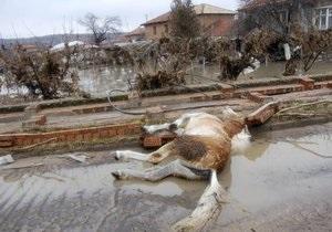 Жертвами наводнения на юге Болгарии стали девять человек