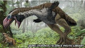 Ученые: гигантская птица была  спокойным травоядным