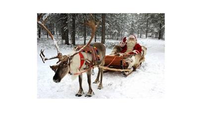 ООН назначила Санта-Клауса послом европейских лесов