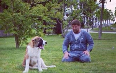 Пропавшая собака Кадырова нашлась в Ингушетии