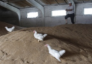 В ноябре Украина продала за рубеж более двух миллионов тонн зерна