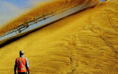 Украина за 2013 год экспортировала зерна на $6 млрд - Миндоходов