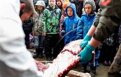 В Дании умертвили жирафа, родившегося в результате кровосмешения