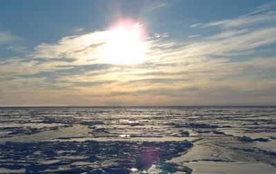 Россия и Южная Корея обсудили пути сотрудничества в Арктике