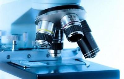 Биохимики смогли вставить наномотор в живую клетку