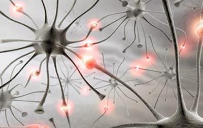 Ученые из Великобритании обнаружили ген гениальности