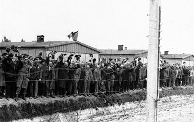 Нацисты надеялись сделать из комаров оружие массового поражения