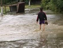 Губернатор Прикарпатья: Вырубка леса - не причина наводнения