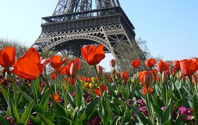 В Киеве пройдет фестиваль Французская весна