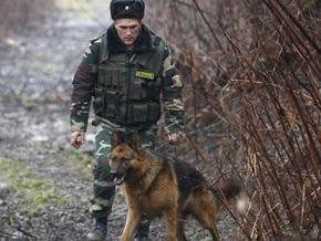 В Сумской области пограничники обнаружили 11 нелегалов, которые прятались в кустах