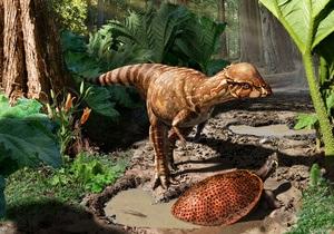 Новости науки - новости археологии: В Канаде нашли древнейшего  бодающегося  динозавра