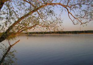 В Донецкой области стратегическое водохранилище отдали в аренду частному лицу