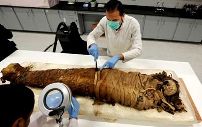 Археологи раскопали в Египте мумии писаря и рыбы