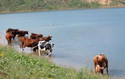 Севастополь обеспечен водой до октября - администрация города