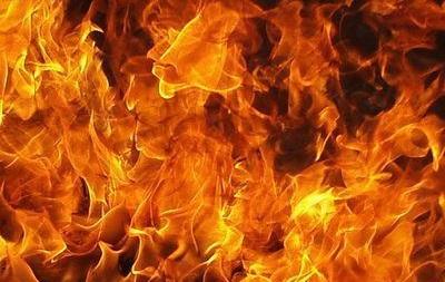 В Донецкой области на пожаре погибло 3 человека, в том числе двое детей