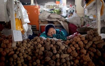 Беларусь ограничит ввоз картофеля из Украины