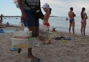 В Крыму вводят запрет на ловлю креветок и мидий