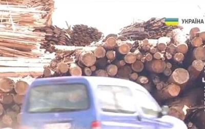 Радиоактивная древесина . На Киевщине перекрыли трассу, требуя закрыть ТЭС