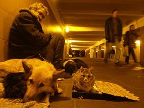 В Москве появится народная дружина для контроля над бездомными