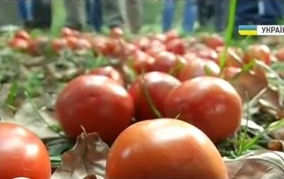 Томатная революция . Портреты депутатов вновь забросали помидорами