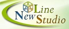 Компания NewLineStudio завершила разработку системы определения позиций сайтов в поисковых системах