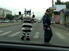 В Йошкар-Оле будет дежурить гаишник в костюме зебры
