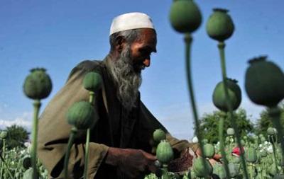 Производство опия в Афганистане бьет рекорды