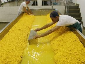 Итальянские мыши понадкусывали сыра более чем на миллион долларов