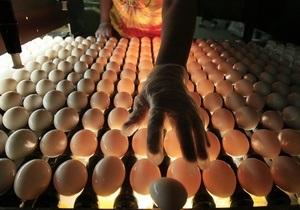 АМКУ обязал 40 крупнейших птицефабрик воздержаться от повышения цен на яйца перед Пасхой