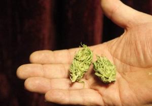 Французские полицейские обнаружили в грузовике с фруктами семь тонн конопли