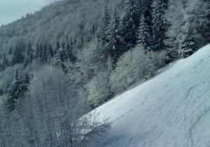 снегопады в Украине - непогода в Украине: В Ивано-Франковской области в горах сошли три лавины