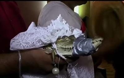 Мэр мексиканского города во второй раз женился на крокодиле