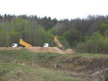 В Киевской области за последние три года незаконно изъято 1000 га леса