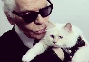 Лагерфельд готов жениться на кошке