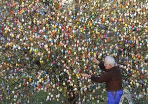 В Германии пенсионер украсил дерево десятью тысячами пасхальных яиц