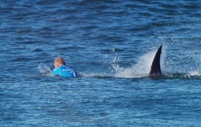 На чемпиона мира напала акула  в прямом эфире