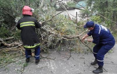 Ураган на Львовщине: обесточены более сотни населенных пунктов