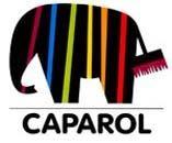 Запущен сайт строительных красок ТМ Alpina (Caparol Group)