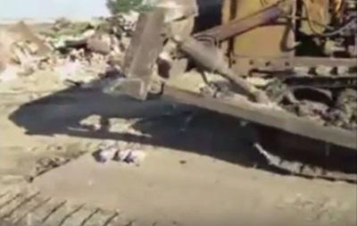 В России уничтожили бульдозером трех санкционных гусей