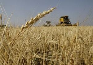 ООН прогнозирует в 2011 году рекордный урожай злаковых культур