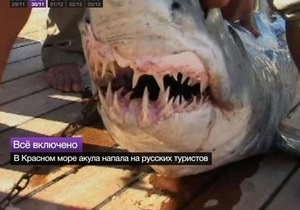 Глава МИД Египта пообещал украинцам предотвратить нападения акул