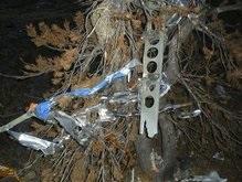 На месте крушения самолета Фоссета найдены человеческие останки