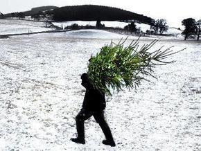 Lenta.ru: Ядерная зима