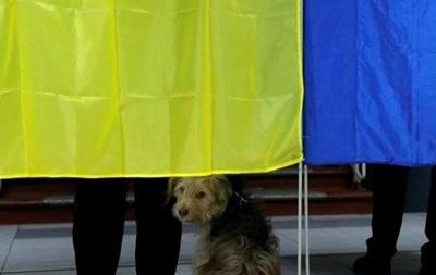 Обнародованы первые официальные данные по выборам мэра Запорожья