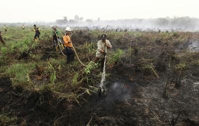 Жертвами лесных пожаров в Индонезии стали более 20 человек