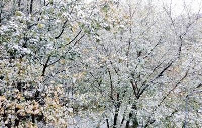 Москву засыпало снегом, аэропорты отменяют рейсы