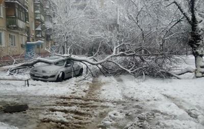 Снегопад в Харькове повалил деревья и выбил свет